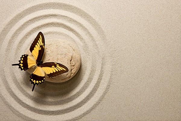 Tableau d co papillon zen izoa for Imagenes zen