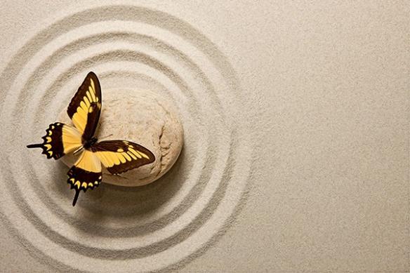 Toile zen Papillon Zen