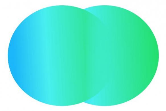 Tableau design Double cercles vert