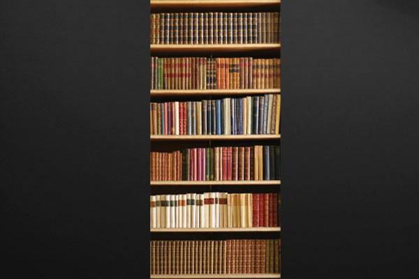 sticker trompe l 39 oeil livres izoa. Black Bedroom Furniture Sets. Home Design Ideas