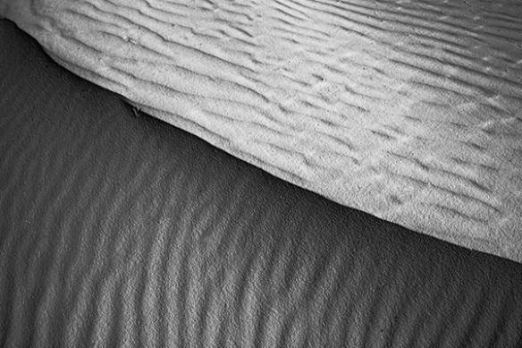 tableau design desert de Kalahari noir et blanc