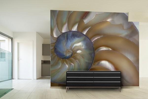 papier peint trompe l 39 oeil colima on izoa. Black Bedroom Furniture Sets. Home Design Ideas