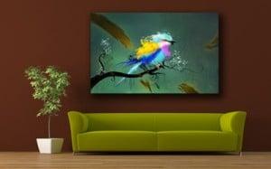 tableau deco oiseau Izoa