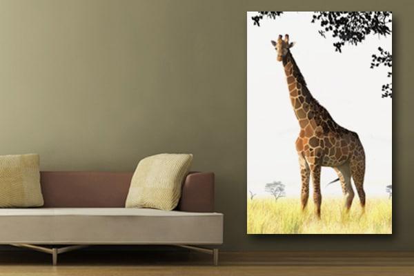 Toile murale girafe