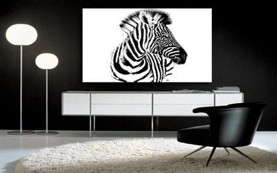 Tableau décoratif zèbre noir et blanc