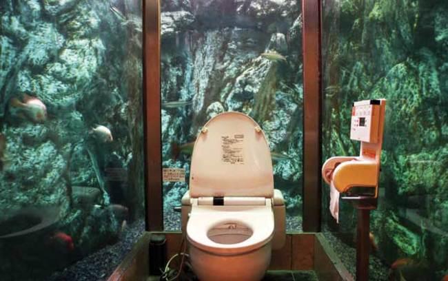 wc aquarium - Copie