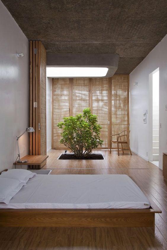 Chambre arbre zen