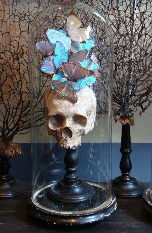 Crâne humain déco papillons