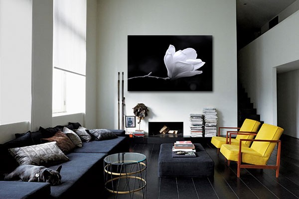Toile déco fleur magnolia noir et blanc