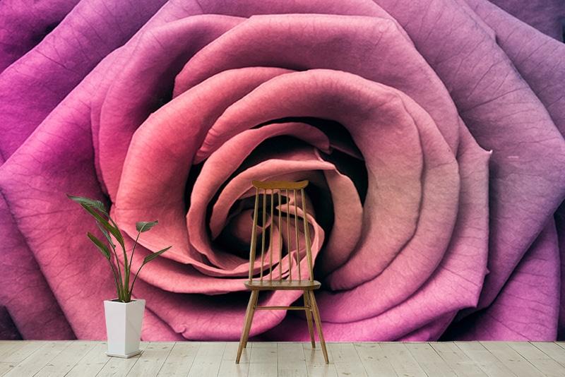 décoration murale poster fleur rose