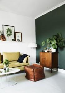 décoration salon mur vert