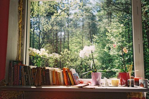 déco bord de fenêtre livres