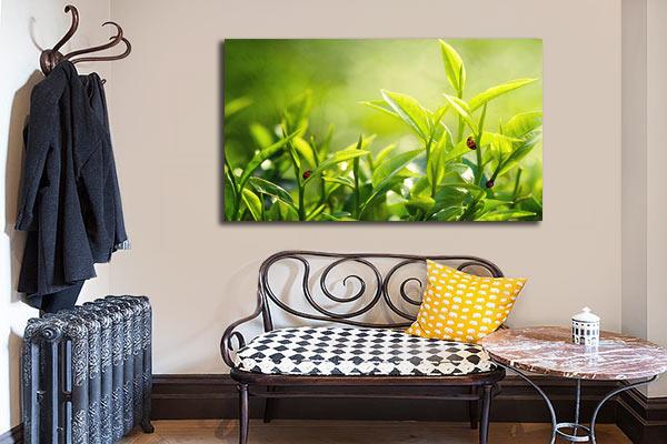 toile imprimée nature verdure