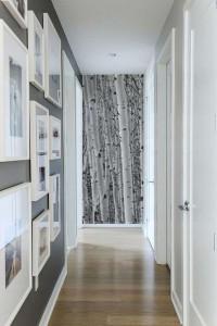 papier-peint-bouleau-blanc-fond-de-couloir