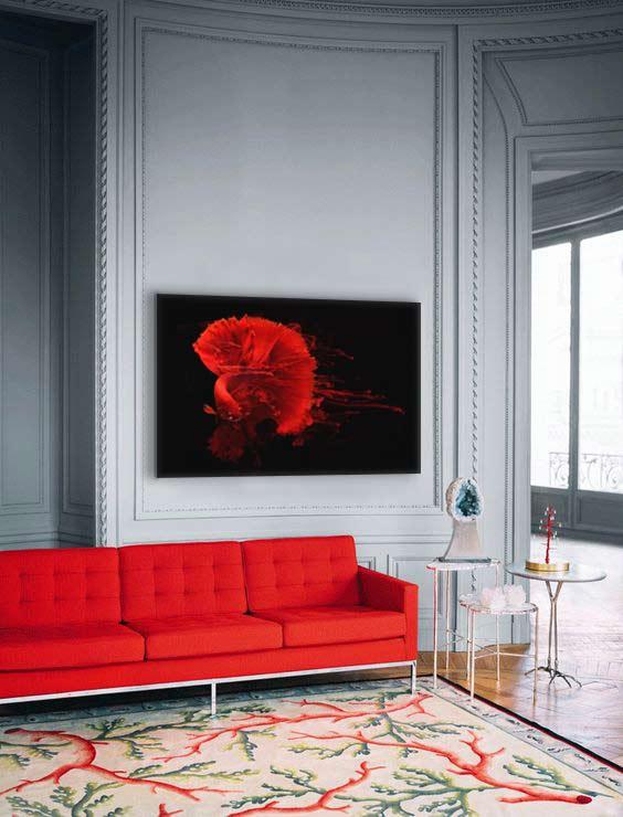 salon-design-canape-rouge-toile-moderne-poisson-combattant