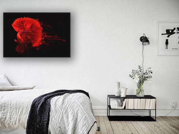 tableau-design-poisson-rouge-combattant-chambre
