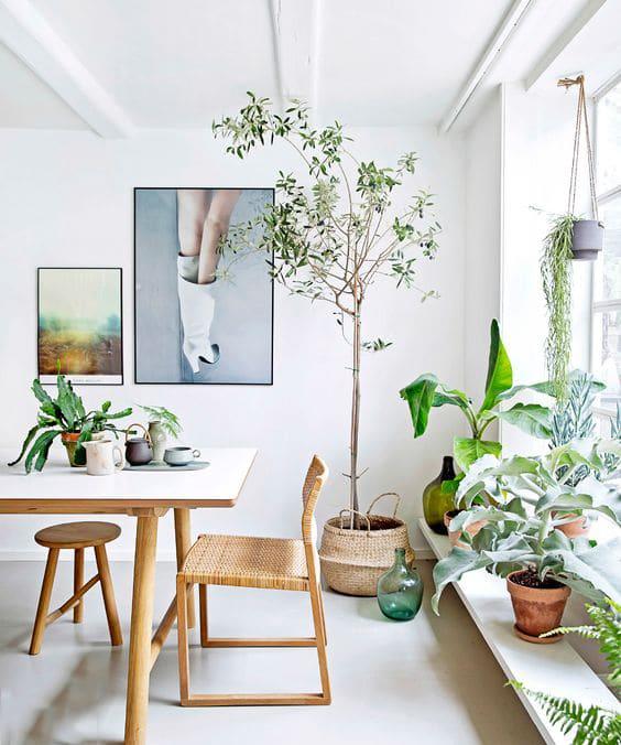 déco intérieure végétale
