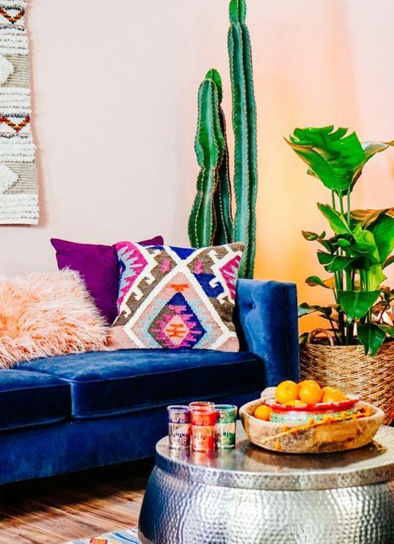 cactus pour décoration mexique