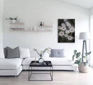 deco-salon-blanc-nature