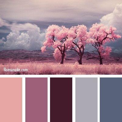 association violet