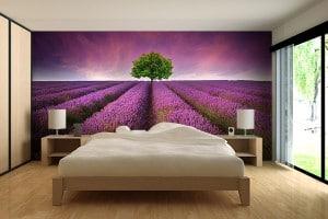 Papier peint violet izoa champ lavande