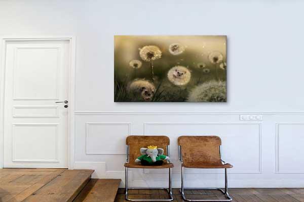 tableau d co original h risson pissenlit nouveaut blog izoa. Black Bedroom Furniture Sets. Home Design Ideas