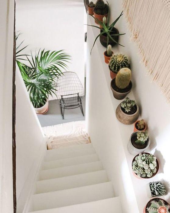 Décoration cage escalier cactus