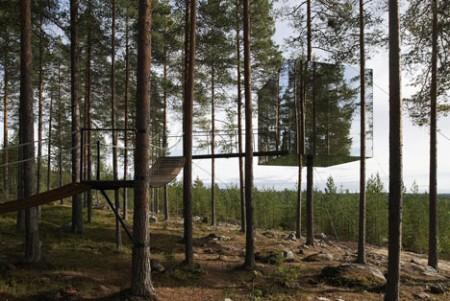 Hotel dans les arbres