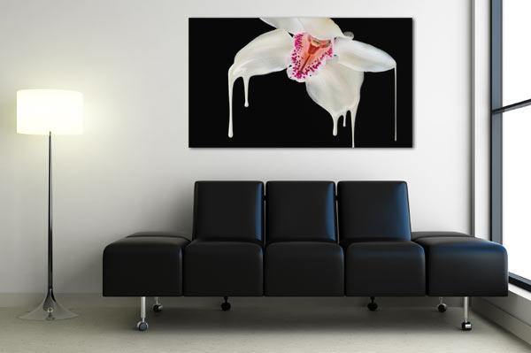 tableau orchidée noir et blanc Izoa