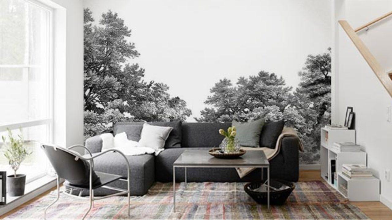 Papier peint forêt noir et blanc : nouveauté - Blog Izoa