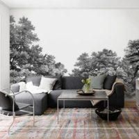 Papier peint forêt noir et blanc : nouveauté